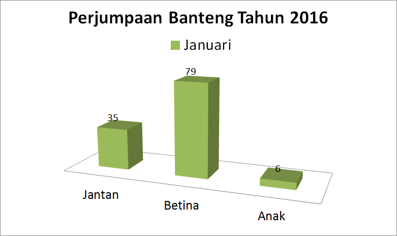 Perjumpaan banteng bulan Januari 2016