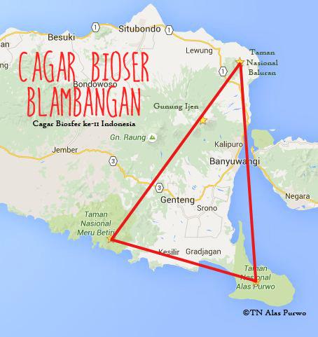 Cagar biosfer