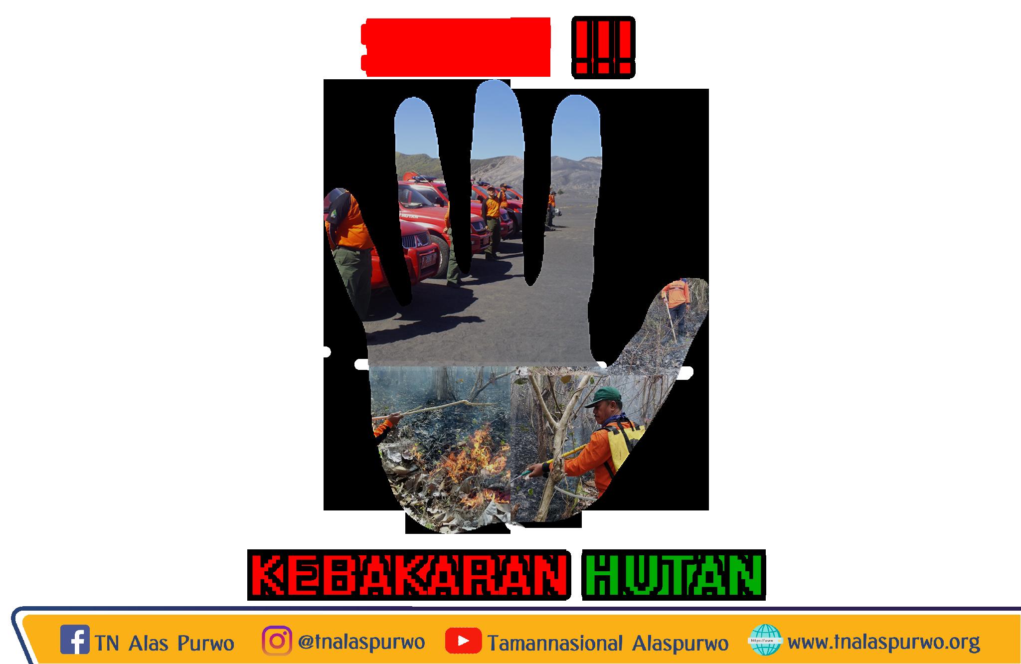 Stop Kebakaran Hutan, TN Alas Purwo, TNAP, Alas Purwo, Taman Nasional Alas Purwo